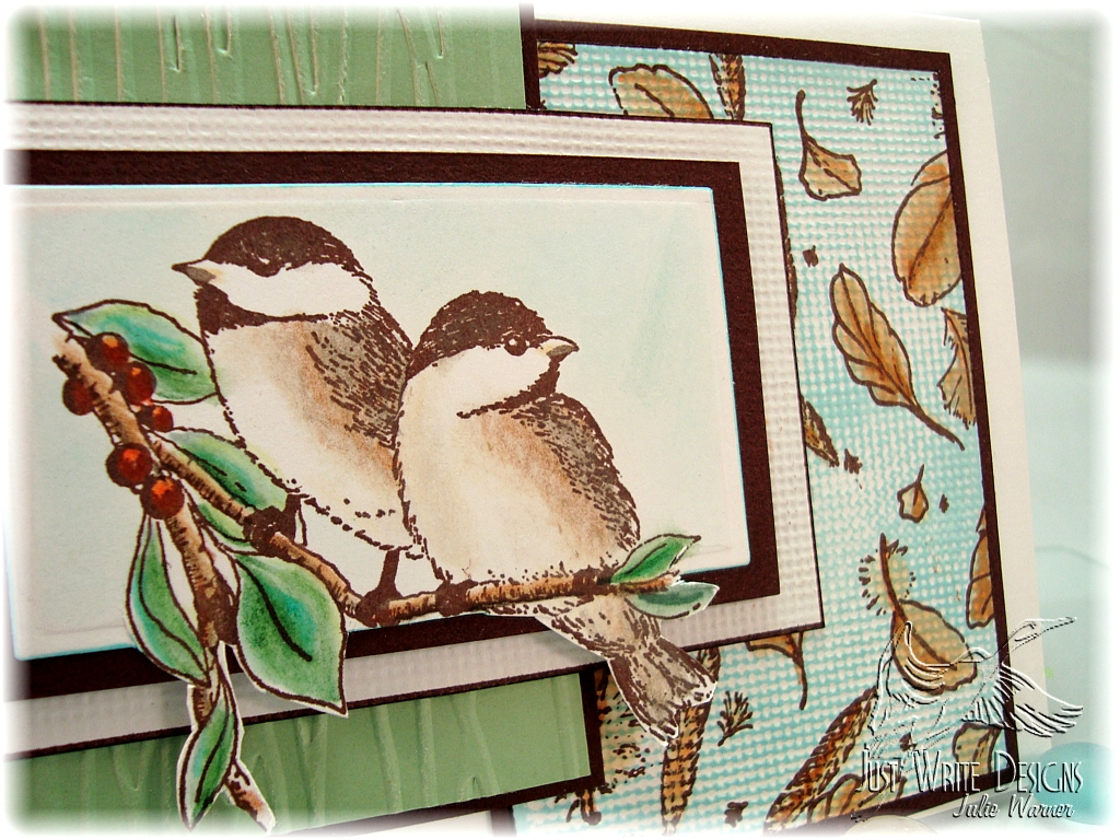 my-little-chickadees-close-up2559ac