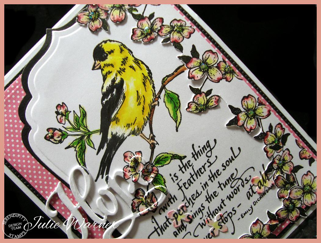 Feathered Hope cu 08574