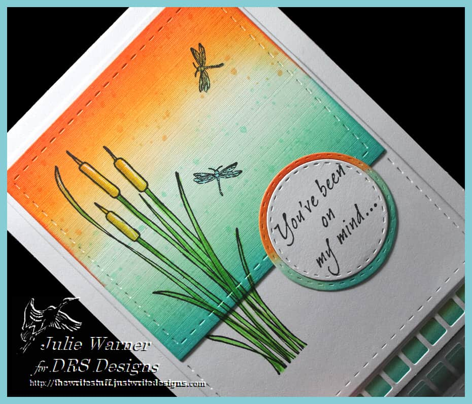 Cattails Dragonflies cu IMG0352
