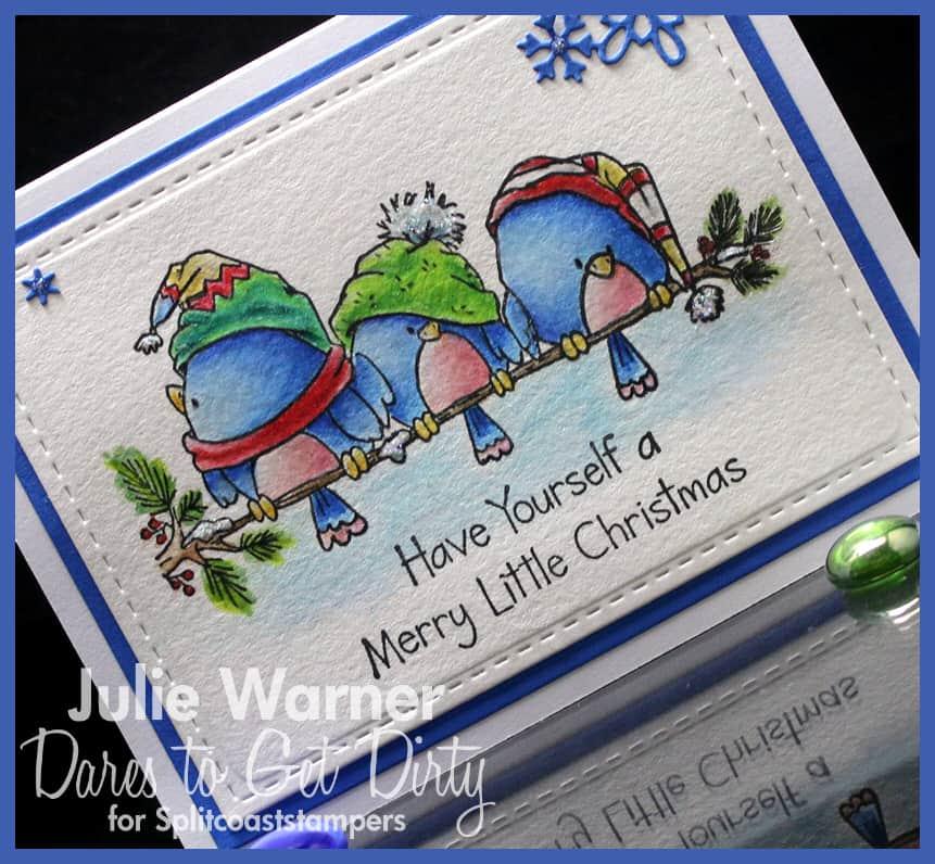 Christmas Birds cu IMG0438