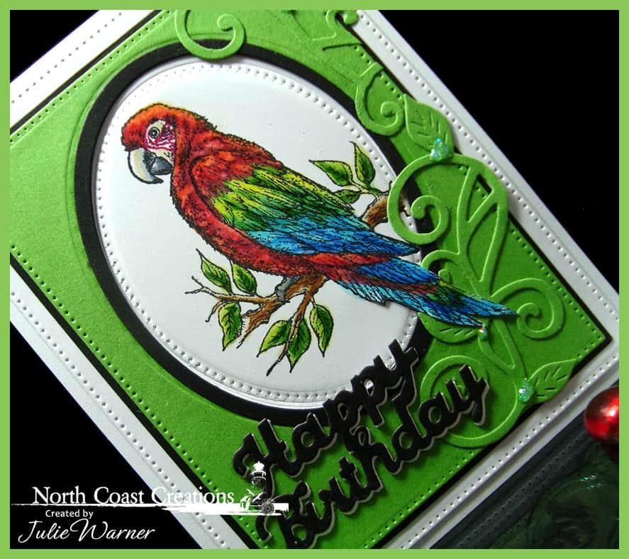 green-wing-macaw-cu-09866