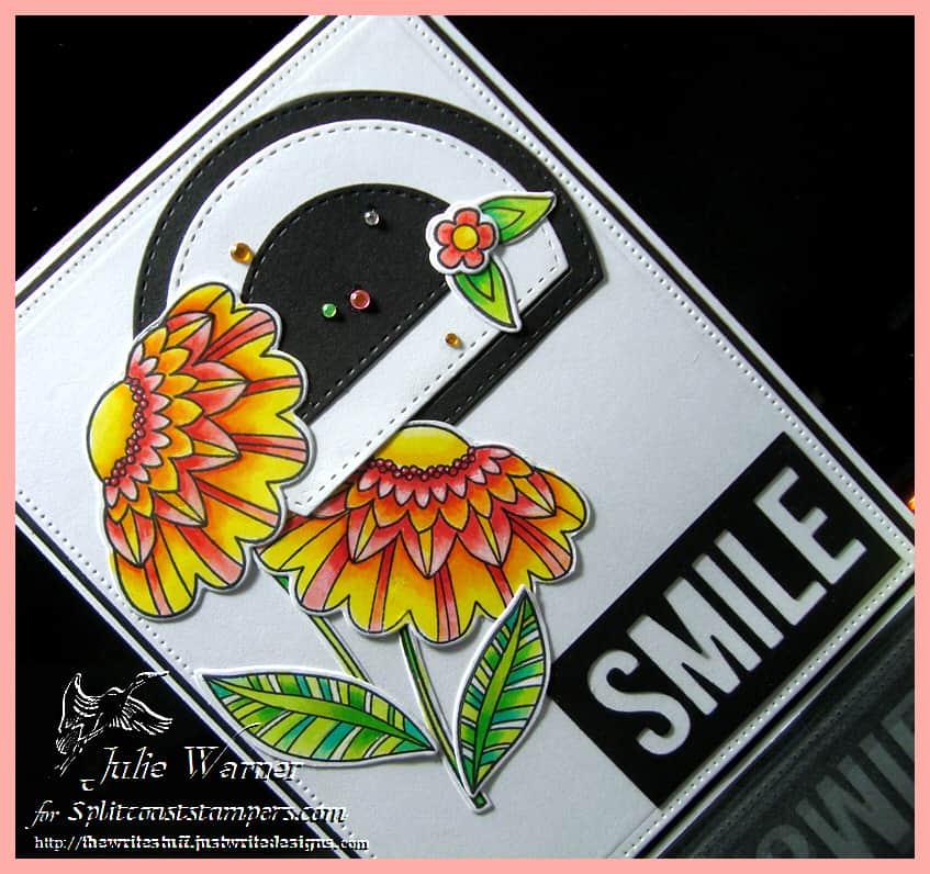 smile-cu-00243